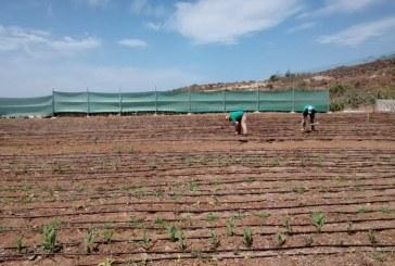 La Escuela Agraria de Las Crucitas llevará el nombre de Antonio Bello Pérez