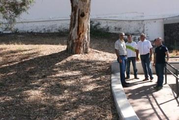 Embellecimiento de la zona exterior del campo de fútbol Francisco Suárez