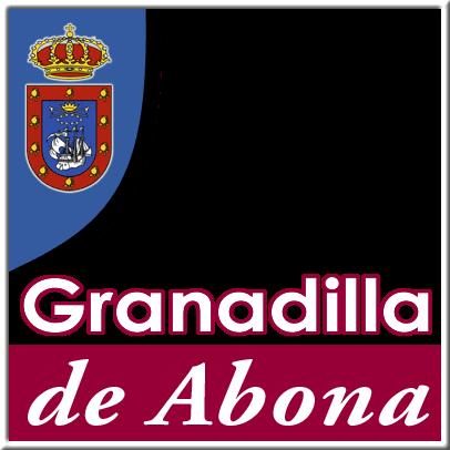 Resultado de imagen de ayuntamiento de granadilla de abona