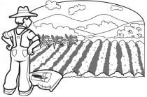Empleo agrícola (imagen1)
