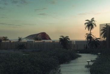 Sobre la construcción de un hotel de 5 estrellas en la zona de Sotavento en La Tejita (IV)