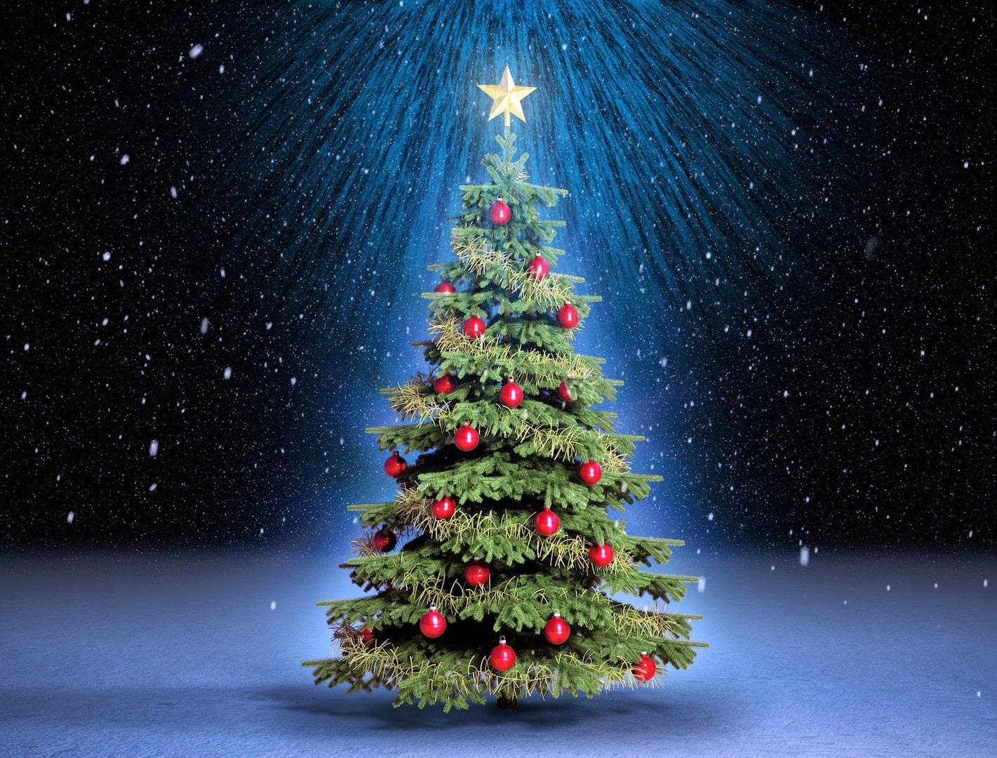 Nochebuena y Navidad, unas fiestas entrañables