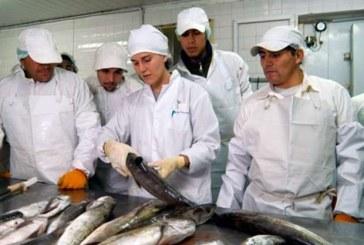 Curso de 'Actualización de la Higiene del Pescado', este miércoles