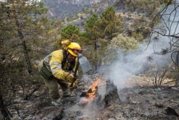 Desactivado después de seis días el Plan de Emergencias por altas temperaturas y riesgo extremo de incendios forestales