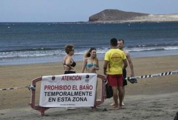 Sobre el cierre de playas, las microalgas y los vertidos de aguas residuales al mar (II)