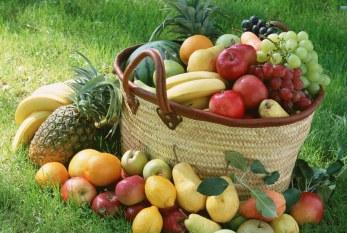 AGRISER y MSBIOTECH, al servicio de la 'agricultura orgánica' y la 'biotecnología'