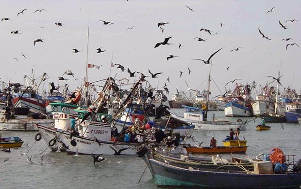 Certificado de la marca colectiva 'Pesca Artesanal' para la Lonja Pesquera y el Restaurante Los Abrigos