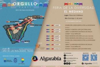 La 'Feria de la Diversidad', este domingo en El Médano