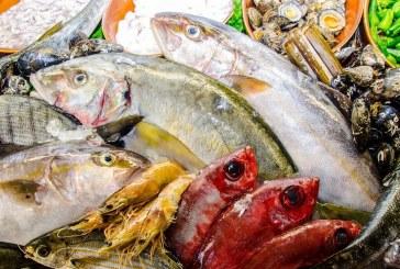 El valor de nuestro pescado como patrimonio gastronómico en 'Sensaciones Más que Mar'