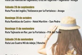 El plazo para inscribirse a la Ruta 'Pico del Inglés – Valleseco por los barrancos del Macizo de Anaga' del sábado día 29 de septiembre finaliza el próximo miércoles