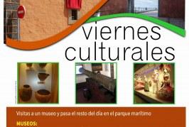 La inscripción a la visita al 'Museo Casa Lercaro' de La Laguna, correspondiente a la actividad 'Viernes Culturales', hasta este viernes