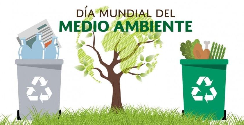 DÍA MUNDIAL DEL MEDIO AMBIENTE 2020 - VALOR.PE | Los mejores ...