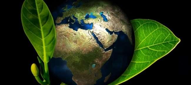 Día Mundial del Medio Ambiente - 5 de Junio 2020 - Erenovable.com